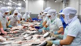 Meeting labour criteria key to fishery growth: seminar