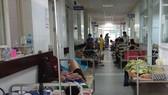 Outbreaks of dengue in Da Nang City