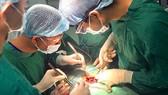 Các bác sĩ đang tiến hành ghép tạng