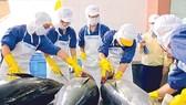 """Doanh nghiệp nhập khẩu hải sản kêu cứu do """"tắc"""" tại cảng"""