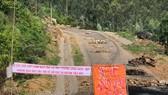 Tỉnh Quảng Ngãi yêu cầu người dân không ngăn cản, nhanh chóng xử lý rác tồn đọng ở Sa Huỳnh
