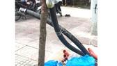 Ngập đường và mối lo rò điện