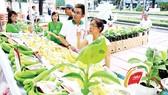 Các doanh nghiệp cần lưu ý việc đăng ký nhãn hiệu trong nước cũng như quốc tế. Trong ảnh: Sản phẩm nông nghiệp công nghệ cao được giới thiệu tại TPHCM