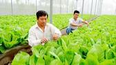 Hỗ trợ lãi vay trong chuyển dịch cơ cấu nông nghiệp đô thị