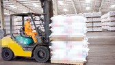 8 tổ chức được ủy quyền kiểm tra chất lượng phân bón nhập khẩu