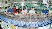 Ngành da giày của Việt Nam được hưởng lợi nhiều nhất từ CPTPP