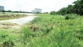 Điều chỉnh quy hoạch sử dụng đất hợp lý để tránh lãng phí, lấn chiếm trái phép…