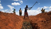 增強小規模農民的能力,為他們提供更好的信息,市場和技術,是確保未來糧食安全的關鍵。(圖源:FAO/聯合國)