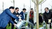 河內人委會領導與芬蘭駐越南大使及各國駐越南大使館代表參加植樹活動。(圖源:英貴)
