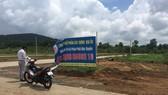 繞洋東市鎮沿路掛牌出售的劃分地皮。(圖源:N.Triều)