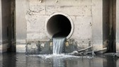 本市的水質污染日益嚴重,大大影響市民的生活環境與健康。(圖源:互聯網)