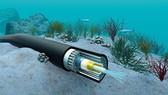 APG 海底光纜又發生故障。(示意圖源:互聯網)