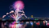 國際煙花燃亮峴港市的夜空。