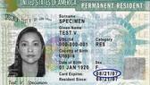 圖為美國綠卡樣本。(示意圖源:USCIS)