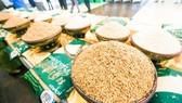 前5月柬埔寨向近 70 個國家出口大米。(示意圖源:互聯網)