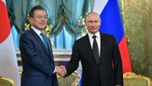 6月22日,在俄羅斯莫斯科克里姆林宮,俄羅斯總統普京(右)與韓國總統文在寅舉行會談時握手。(圖源:AFP)