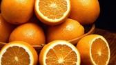 研究表明,經常吃橙子的人可降低患老年性黃斑變性的風險。老年性黃斑變性又稱年齡相關性黃斑變性,是由黃斑區結構的衰老性改變導致的眼底病變,患病率隨年齡增長而升高,是當前導致老年人失明的主要原因之一。這種眼疾在50歲以後更有可能發生,目前還沒有治療這種疾病的辦法。