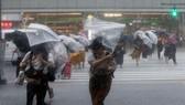 日本遭颱風侵襲致多人傷,178 次航班被取消。(圖源:互聯網)
