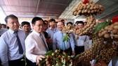 政府副總理王廷惠參觀農產品展。(圖源:誠鐘)