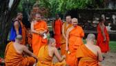 統計數據顯示,全泰國有將近50%的僧人體重過胖,也就是說,每2名和尚就有1人超重。(示意圖源:互聯網)