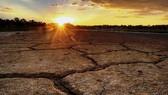 氣候變化正損害全球糧食安全。(示意圖源:互聯網)