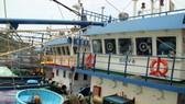 Tàu vỏ thép hư hỏng nằm bờ nhiều tháng trời tại cảng Đề Gi (huyện Phù Cát, Bình Định)