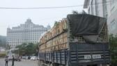 Từ 1-4, rau củ quả Việt Nam xuất sang Trung Quốc phải có nhãn mác xuất xứ