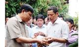 Giám đốc Sở NN-PTNT tỉnh Hưng Yên trả lời về thông tin nhãn nhúng lưu huỳnh