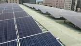 EVN mua gần 2.300MW điện mặt trời của nhà đầu tư