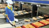 Kiểm tra năng lực sản xuất tại các doanh nghiệp bình ổn