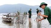 Người dân và bộ đội biên phòng Thừa Thiên- Huế trồng ngập mặn nơi bờ biển sạt lở