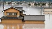 Nhật Bản: Hơn 73.000 người tham gia cứu hộ sau lũ