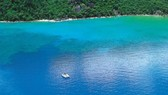 Các vụ cá mập tấn công xảy ra tại khu vực cảng Cid trong quần đảo Whitsunday, bang Queensland, Úc. Ảnh: RACQ CQ