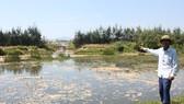 Thời điểm dự án nuôi tôm xả thải bẩn trực tiếp ra môi trường gây ô nhiễm