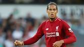 """Virgil van Dijk sớm phải """"gồng gánh"""" hàng phòng ngự Liverpool. Ảnh: Getty Images"""