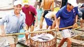 Nông dân ĐBSCL thu hoạch cá tra                                             Ảnh: CAO PHONG