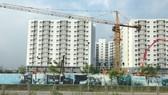 Sắp tới, các công trình xây dựng từ  9 tầng trở lên phải sử dụng tối thiểu 80% VLXKN                                                                                                                       Ảnh: HUY ANH