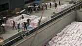 Vận chuyển gạo tại một nhà máy ở Bangkok, Thái Lan. Nguồn: TTXVN