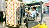 Khoai lang tím được đóng gói xuất khẩu