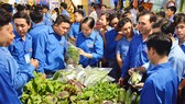 Đoàn viên thanh niên xứ dừa trao đổi kinh nghiệm khởi nghiệp, thoát nghèo                                                                                                                       Ảnh: HÀM LUÔNG