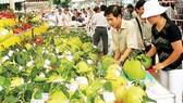 Xây dựng thương hiệu nông sản thực phẩm