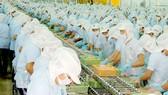 Quản lý chặt nguyên liệu hải sản nhập khẩu