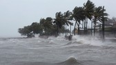 Áp thấp nhiệt đới đã mạnh lên thành bão - cơn bão số 5 trên biển Đông