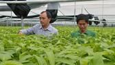 Hội thảo về ứng dụng công nghệ cao trong nông nghiệp