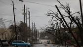 Florida tan hoang sau siêu bão Michael mạnh nhất kể từ năm 1992