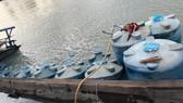 Trục vớt thành công 26 tấn axit chìm xuống sông Đồng Nai