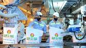 Đạm Cà Mau cán mốc sản lượng 5 triệu tấn ure