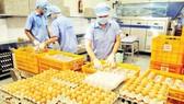 Chế biến trứng gà cung ứng hàng bình ổn thị trường tại Công ty Vĩnh Thành Đạt. Ảnh: CAO THĂNG