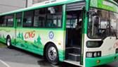 Công ty Xe khách Sài Gòn: Đổi mới gần 300 xe buýt