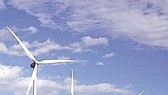 Châu Âu lập kỷ lục về sản lượng điện gió
